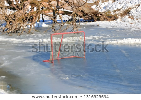 Ice hockey net on melting ice Stock photo © bigjohn36