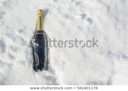 bottle champagne in the snow Stock photo © compuinfoto