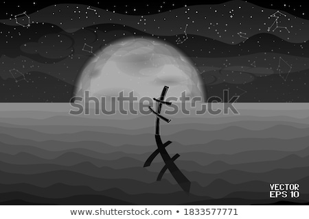 Starry Cross, vector illustration Stock photo © carodi