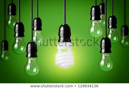Energy-saving fluorescent lamp Stock photo © boroda