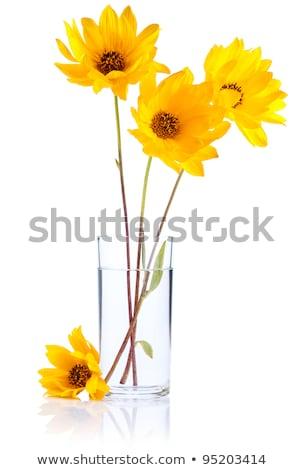 vazo · çiçekler · çiçek · sevmek · yaprak - stok fotoğraf © boroda