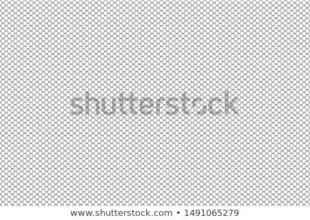 Netting. Stock photo © Leonardi