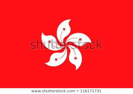 flag of Hong Kong vector illustration Stock photo © konturvid
