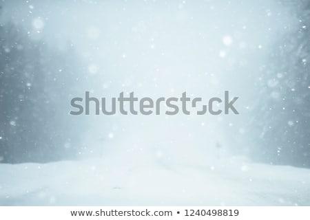 Tél időjárás hóvihar öreg stilizált képeslap Stock fotó © MiroNovak