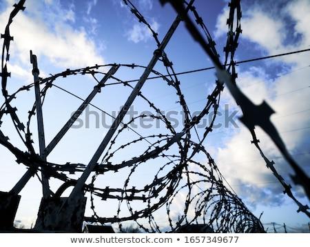 Borotva kerítés zöld háttér farm fekete Stock fotó © jarin13