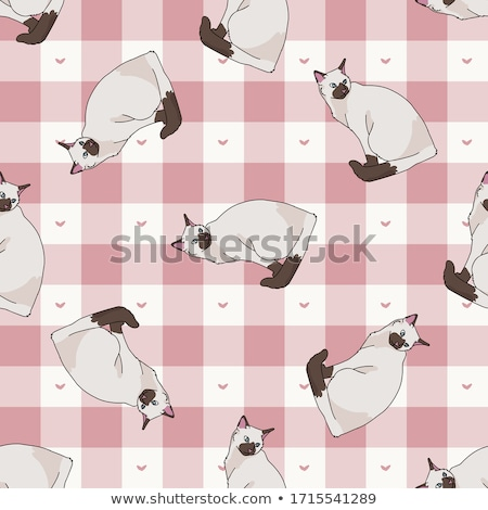 Seamless Pattern All over Background with character cats on a dotted lines background  Stock photo © gigi_linquiet