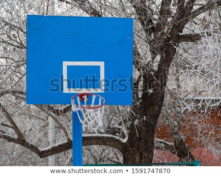 Basketball rim and net with hoarfrost Stock photo © lightkeeper