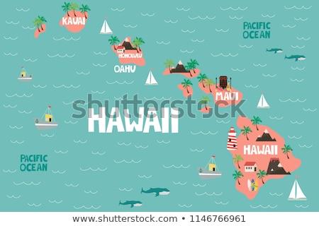 Mapa Hawai EUA aislado ilustración gris Foto stock © rbiedermann
