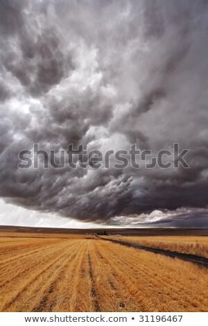 雷 · 嵐 · モンタナ · 雷雨 · 建物 · アップ - ストックフォト © emiddelkoop