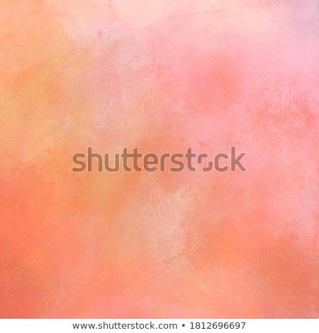 Orange sherbet stock photo © Digifoodstock