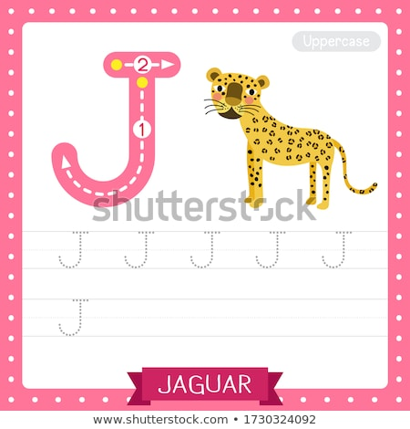 Flashcard letter J is for jaguar Stock photo © bluering