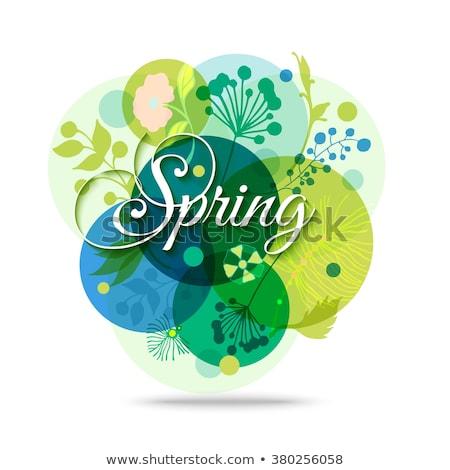Primavera plantilla eps 10 tarjeta de felicitación flores Foto stock © beholdereye