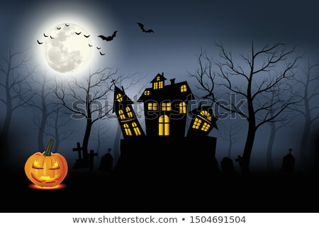 scary haunted halloween house in front of moon Stock photo © SArts