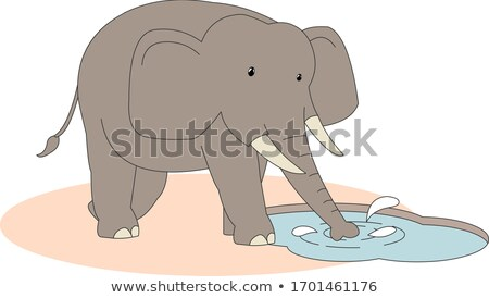 Elephant drinking from a water puddle. Stock photo © simoneeman