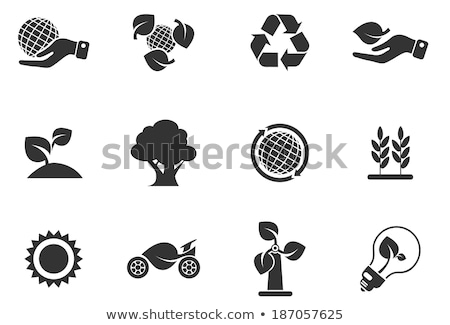 Icon protect the land  Stock photo © Olena