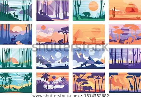 camelo · deserto · ilustração · grupo · caminhada · céu - foto stock © bluering