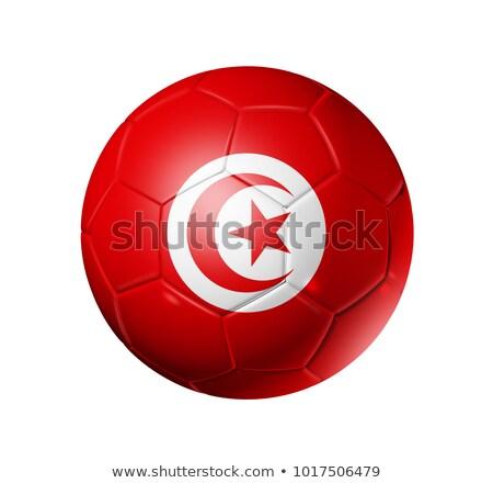 Bandeira futebol futebol cores elementos Foto stock © nazlisart