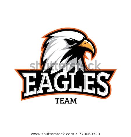 Red Eagle Head Cartoon Icon Vector Illustration Stock photo © cidepix