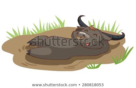 Cartoon Buffalo Napping Stock photo © cthoman