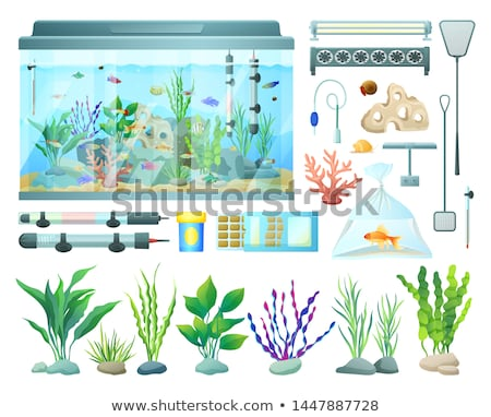 Aquarium Equipment and Varied Seaweed Collection Stock photo © robuart