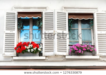 Windows bloemen montmartre straat Parijs stad Stockfoto © vapi