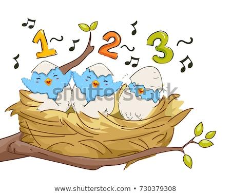 птиц гнезда петь 123 иллюстрация молодые Сток-фото © lenm