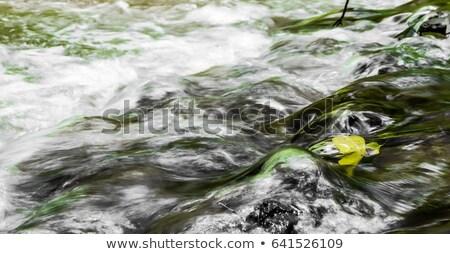 Stream rosso arrow bianco piccolo Foto d'archivio © make