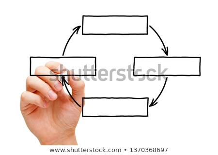 Hand Drawing Blank Cycle Diagram Stok fotoğraf © ivelin