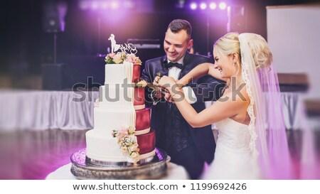 花嫁 · 新郎 · 孤立した · 白 · 結婚式 · 実行 - ストックフォト © elenabatkova