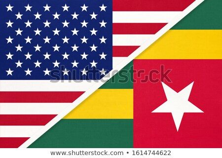 Republiek vlag drogen aarde grond textuur Stockfoto © grafvision