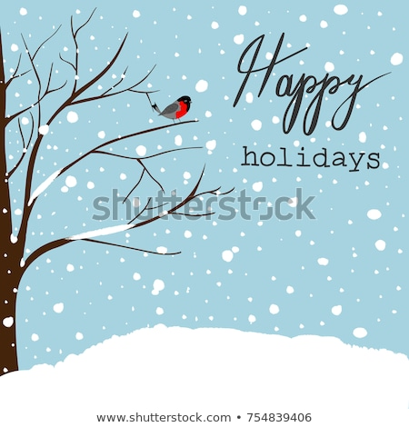 Christmas and New Year blue nordic bird card Stock photo © cienpies