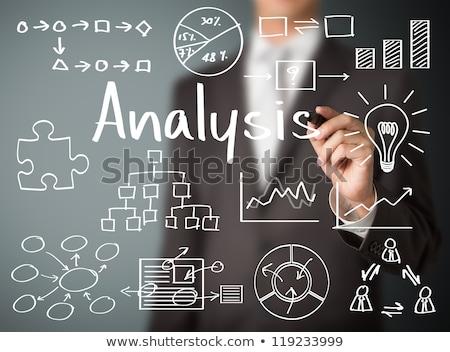 How Write Business Plan, Statistical Data Analysis Stock photo © robuart
