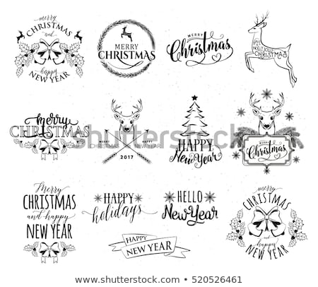 Merry Christmas Caption, Greeting with Holiday Stock photo © robuart