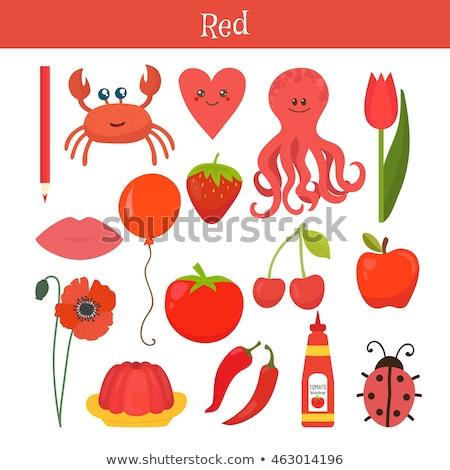 красный узнать цвета образование иллюстрация первичный Сток-фото © natali_brill