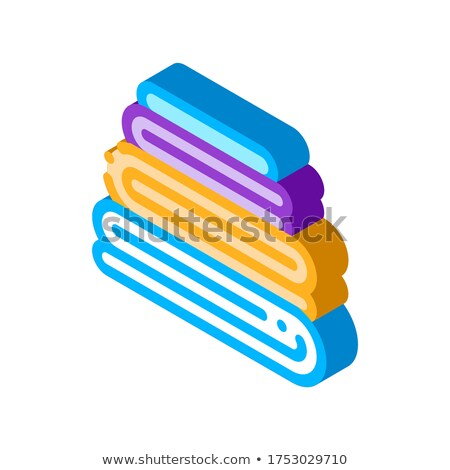 Laundry Service Washed Ironing Things isometric icon vector illustration Stock photo © pikepicture