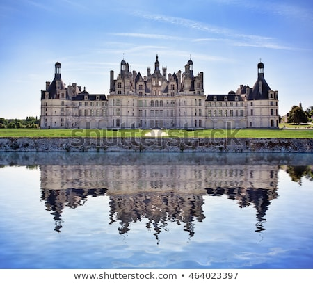 Chambord castle detail Stock photo © smithore