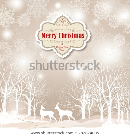 Two retro christmas backgrounds stock photo © BibiDesign