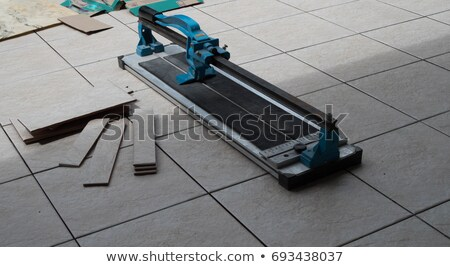 a construction manager and a  worker with a tile cutter Stock photo © photography33