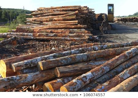 tarcica · brązowy · czerwony · fabryki · mętny · niebo - zdjęcia stock © rigucci