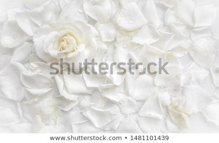 Fehér románc mezítláb nő visel fehér ruha Stock fotó © Fisher