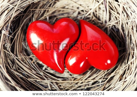A loving couple nestling together Stock photo © photography33