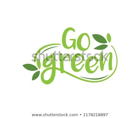 Yeşil etiket eco afiş ahşap doku ahşap Stok fotoğraf © digitalmojito