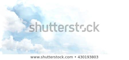 белый · Полевые · цветы · художественный · Гранж · Blue · Sky · природы - Сток-фото © karandaev
