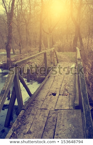 toamnă · râu · fotografie - imagine de stoc © photoline