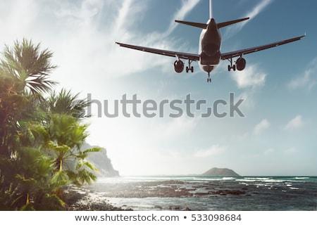 Uçak uçan tropikal palmiye ağaçları palmiye mavi Stok fotoğraf © chris2766