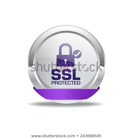 Ssl korumalı mor vektör ikon dizayn Stok fotoğraf © rizwanali3d