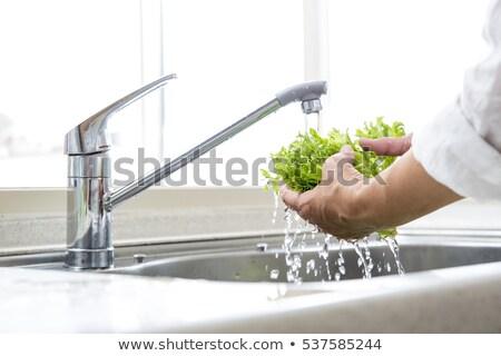 legumes · frescos · afundar · mão · cozinha · verde · vermelho - foto stock © fotografiche