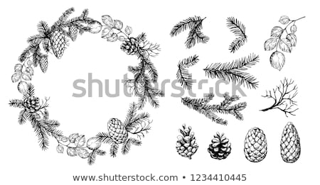 Pine Cone Wreath Winter Background Stock photo © enterlinedesign