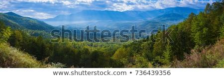 nascer · do · sol · enfumaçado · montanhas · sol · cedo - foto stock © tmainiero