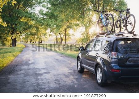 Autó vidéki út fa nap naplemente tájkép Stock fotó © zurijeta